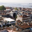 图库照片: Panoramic view of Istanbul roofs