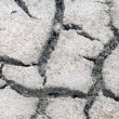 Cracked dry salt lake bottom - Stock Photo