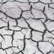 Stock Photo: Cracked dry salt lake bottom