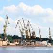 A lot of harbor crane - Stock Photo