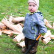 Boy with wood chopper - Stock Photo