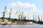 A lot of harbor crane — Stock Photo