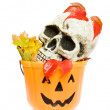 Halloween skull and pumpkin — Stock Photo