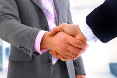 Business partners handshaking