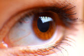 Beautiful hazel eye — Stock Photo