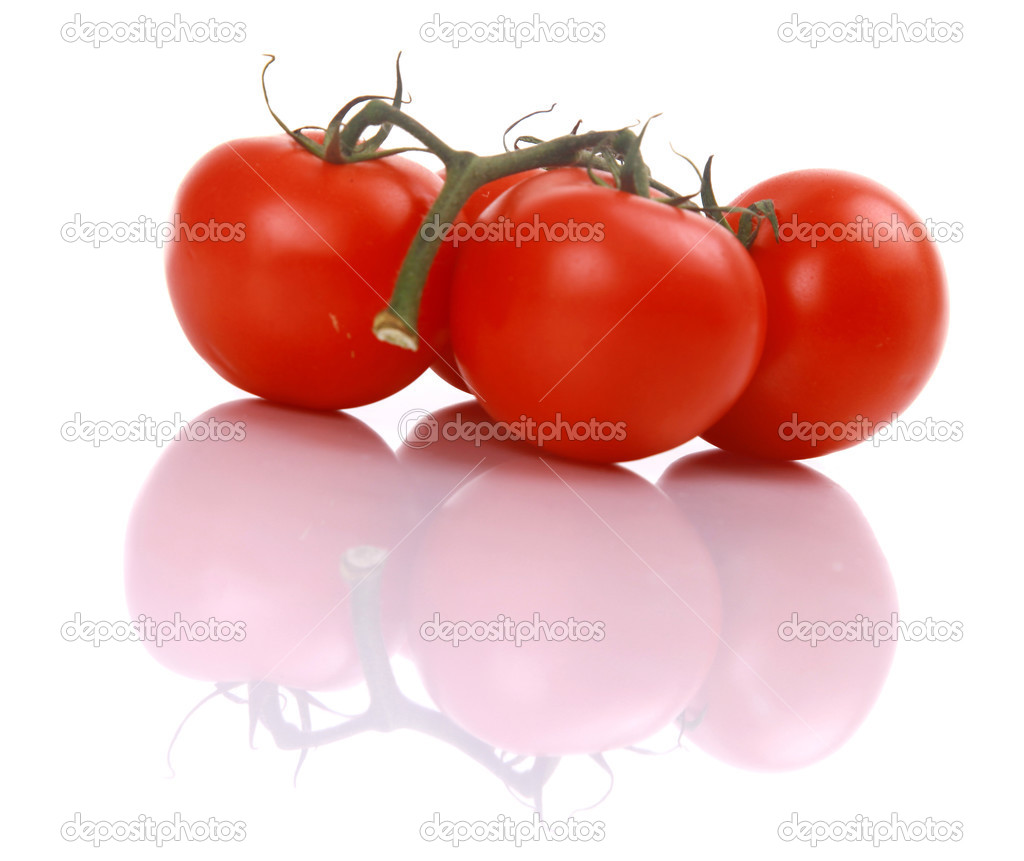 Home grown tomatoes on the vine — Stock Photo #2528390