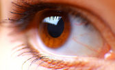 Hazel eye — Stock Photo