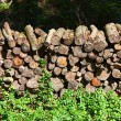 Royalty-Free Stock Photo: Stacked timber logs - fuel for fire -