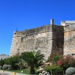 Wall of ancient fortress — Foto de Stock   #1145151