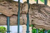 металлический забор — Стоковое фото