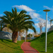 Path through landscaped park — Stock Photo #1315056