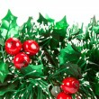 Christmas decorations on white backgroun — Stock Photo #1370200