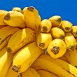 Delicious Ripe Bananas — Stock Photo