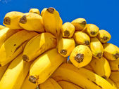 Delicious Ripe Bananas — Stock Photo