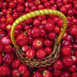 Royalty-Free Stock Photo: Basket Full of Cowberries