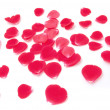 Rose Petals — Stock Photo #1156021