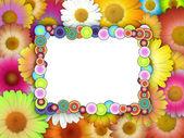 Blank Frame on Chamomile Background — Stock Photo