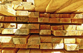 Stacked Construction Wood — Stock Photo