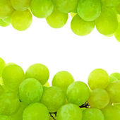 Green Grape Background — Stock Photo