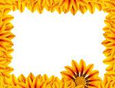 Golden Flower Frame — Stock Photo