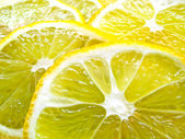 Juicy Lemon Slices — Stock Photo