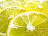 Juicy Lemon Slices — Stock Photo