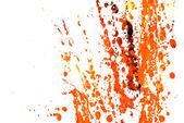Paint splashes on white — Stock Photo