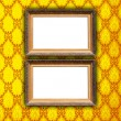 Two Blank Frames on Vintage Wallpaper — Stock Photo #1170084