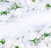 Bouquets de noiva — Foto Stock
