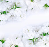 Bukiety ślubne — Zdjęcie stockowe