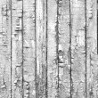 Vintage Wood Background — Stock Photo