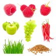 Food Mix - Stockfoto