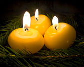 Burning Candles on Fir Tree Branches — Stok fotoğraf