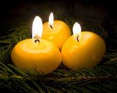 Hořící svíčky na větvích stromů jedle — Stock fotografie