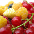 Fresh Berry Mix — Stock Photo