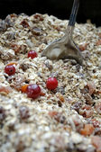 Muesli with Fresh Berries — Stock Photo