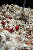 Muesli with Fresh Berries — Stock Photo