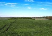 Schilderachtige landschap — Stockfoto