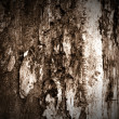 Dark Wood Texture — Stock Photo