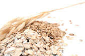 Oat Grains and Oat Flakes — Stock Photo
