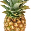 Pineapple — Stock Photo #2565025