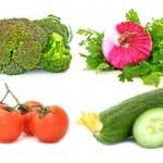 Colección vegetal — Foto de Stock