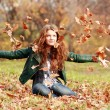 Autumn Leaf fall — Stock Photo #1322123