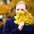 Young beautiful girl in autumn park — Stock fotografie #1324378