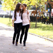 Fashionable girls twins walk - Stok fotoraf