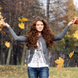 Stock Photo: Autumn Leaf fall