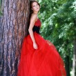 Lady in red dress — Stock Photo #2499072