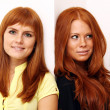Red-haired couple — Stock Photo #2511202