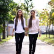 Fashionable girls twins walk in the stre — Stock Photo