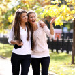 Two cheerful girls twins, in the street — Stock Photo #2518457